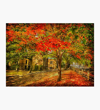 First signs of fall  II Photographic Print