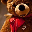 Teddy by MrRoderick