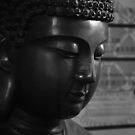 city buddha. hobart, tasmania by tim buckley | bodhiimages
