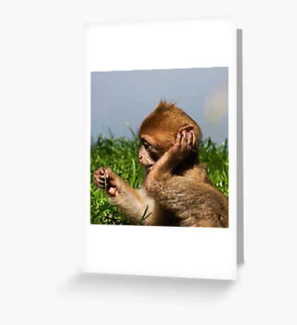 what was that you said!!! Greeting Card