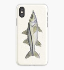 """Snook"" by Amber Marine ~ watercolor fish art, © 2013 iPhone Case/Skin"