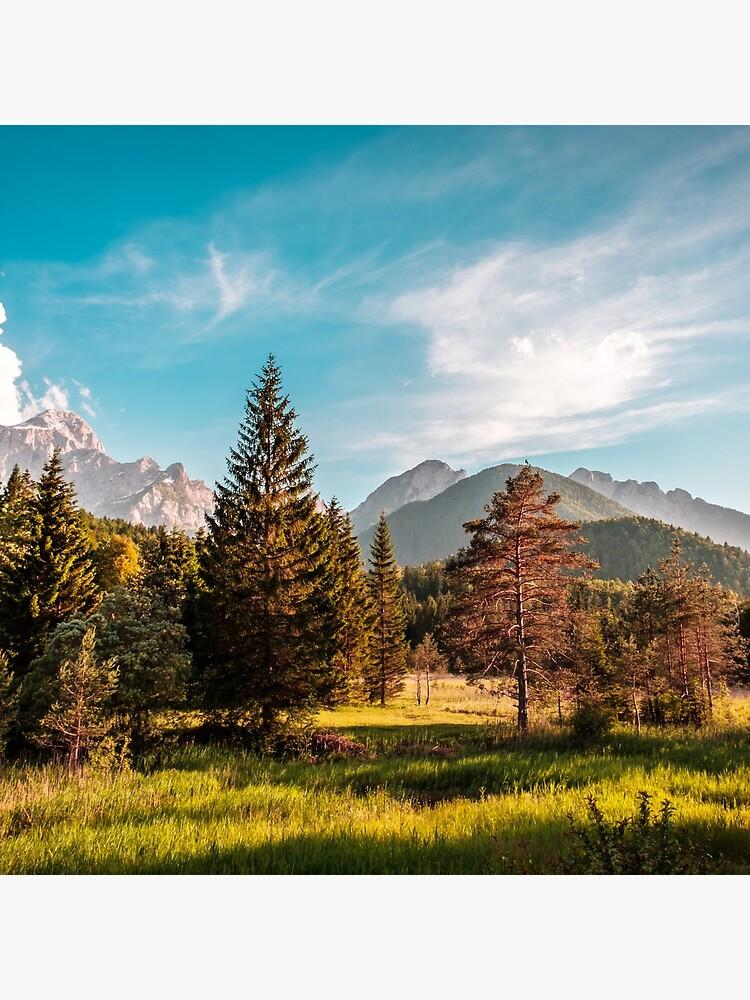 Summer has arrived in the italian alps by zakaz86