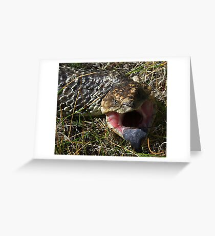 """""""Bite You Mister"""" Greeting Card"""