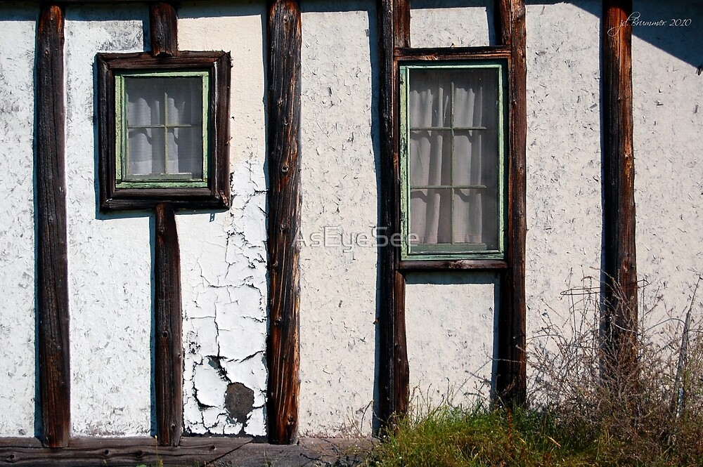 Dual Panes by AsEyeSee