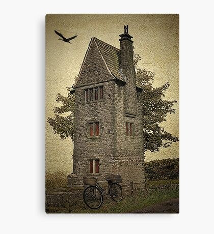 Is There Anybody Home? Canvas Print