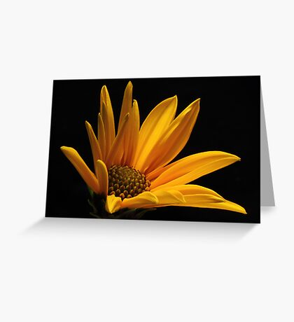 Giallo II Greeting Card
