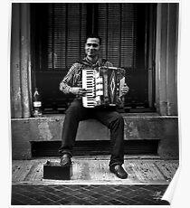 Romanian accordionist Poster