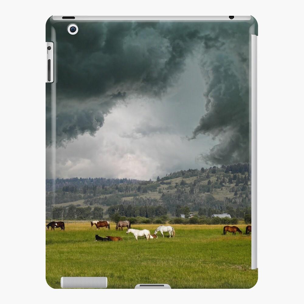4901 iPad-Hülle & Skin