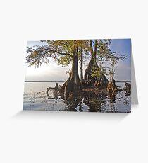 Surreal Cypress Greeting Card