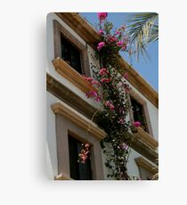 Climbing Flowers Canvas Print