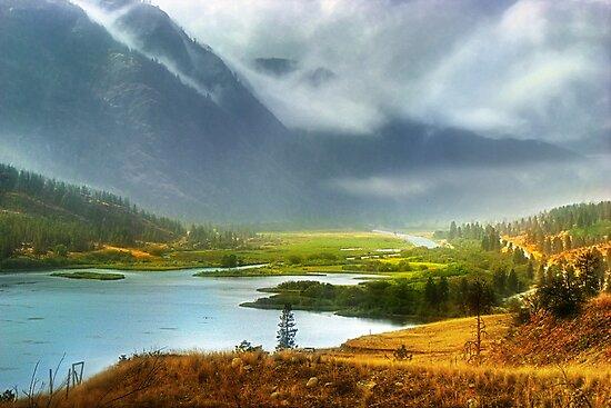 In the mist by John Poon