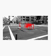 Monogatari – Red Crab Photographic Print