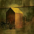 Garden Shed... by Karen  Helgesen