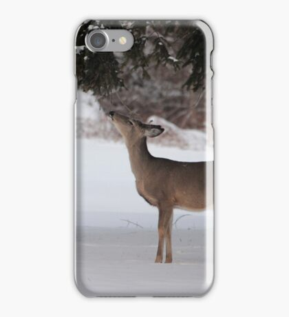 Foraging iPhone Case/Skin