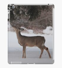 Foraging iPad Case/Skin