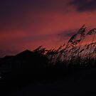 Amber Waves Goodnight by mojo1160