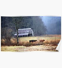Mountain Farm Poster
