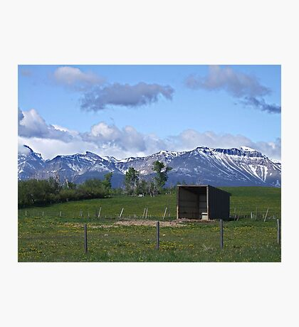 The Shelter Photographic Print
