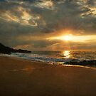 Golden Nayarit Sunset by Lynnette Peizer