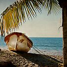 Fishing Boat Under the Palm by Lynnette Peizer