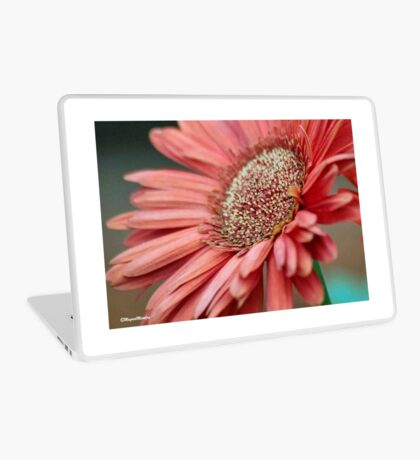 GERBERA IN PINK Laptop Skin