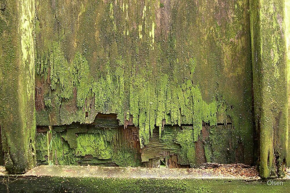 moss garden V by Olsen