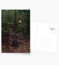 Giant Orb in my Enchanted Backyard Postcards