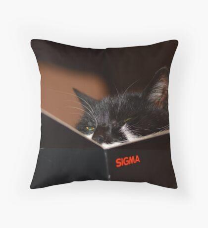 Sigma cat  Throw Pillow