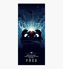 How to Train your Dragon 2 - Freedom Photographic Print
