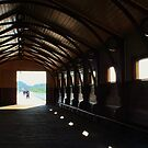 Pier at Queenscliff, Victoria by brendanscully