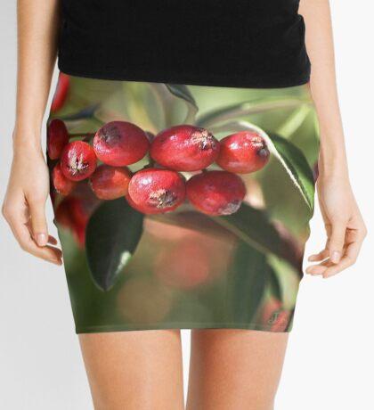 Berry Delight Mini Skirt