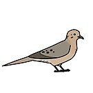 Mourning Dove by KeesKiwi
