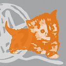 Hier Kitty, Kitty - Orange / Grau | Kätzchen, Katze, Garn, Niedlich, Süß, Liebenswert, Adorbiert, Lila, Ultraviolett, Orange, Sorbett, Lavendel, Rosa, Kaugummi, Grau, Asche, Holzkohle von CanisPicta