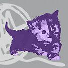Hier Kitty, Kitty - Lila / Grau | Kätzchen, Katze, Garn, Niedlich, Süß, Liebenswert, Adorbiert, Lila, Ultraviolett, Orange, Sorbett, Lavendel, Rosa, Kaugummi, Grau, Asche, Holzkohle von CanisPicta