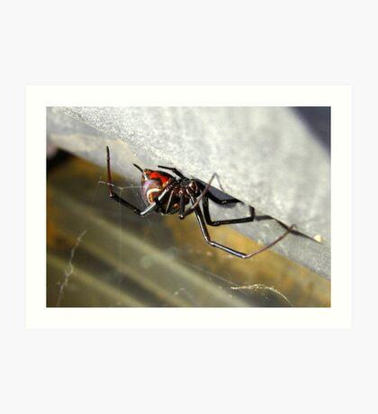 Black Widow ~ Female Art Print