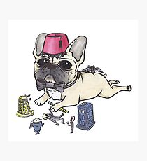 Dr Who French Bulldog Photographic Print