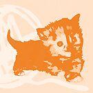 Hier Kitty, Kitty - Pastellorange | Kätzchen, Katze, Garn, Niedlich, Süß, Liebenswert, Adorbs, Orange, Sorbet, Mandarine, Hell, Pastell, Blass von CanisPicta