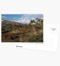 From Charlotte's Pass Postcards