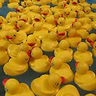 rubber duckie your the one... by pallyduck