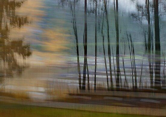 Memory Lane by finnarct