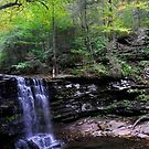 Harrison Wright Falls by Debra Fedchin