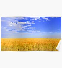 Grains and Sky Poster