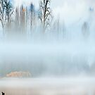 Fog on the Fraser #3 by Carolann23