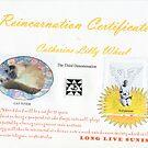Reincarnation Certificate by sunism