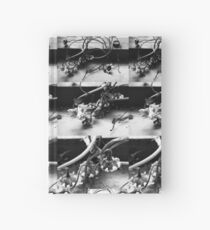 Dried blossom (black and white) Hardcover Journal
