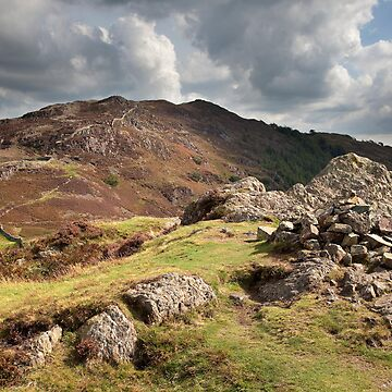 Lingmoor Fell From Side Pike by SteveMG