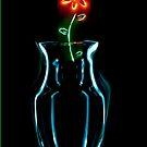 Rebecca's Flower by Douglas Gaston IV