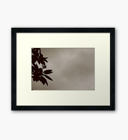 SEPHIA CLOUDS Framed Print