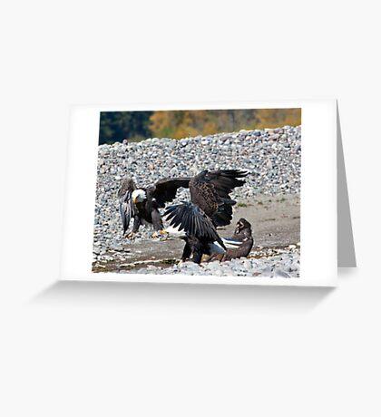 Eagle Family Squabble Greeting Card