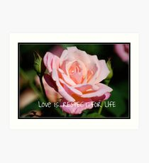 Calendar Rose - May Art Print